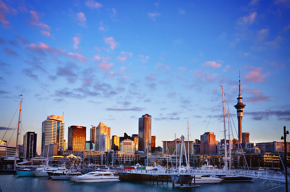 Golden Auckland